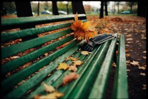 fall by dpavlov