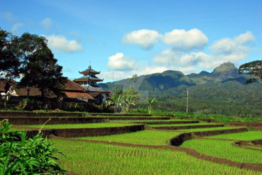 view of Pagersari by KFT-Andri