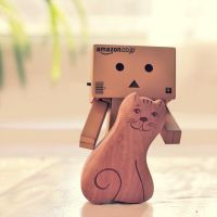 danbo's cat by Estelar