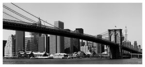 patw - new york 03 by salviphoto