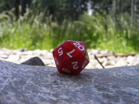 D20 in Forest by Oktek
