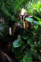 Crouching Tiger Hidden Mando by TigerMando