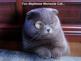 You Displease the Monocle by Kenny-BS