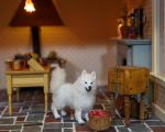 Dollhouse Miniature 1:12 Samoyed Dog by heartfeltcanines
