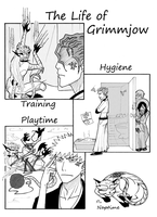 Life of Grimmjow by Kotszok