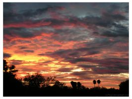 Tucson Sunset XV by vii2tigo