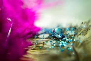 Pink and Blue by AdrianaFilip
