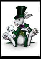 The White Rabbit by mrpip