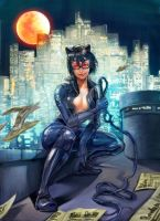 Catwoman by kzver