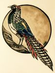 Lady Amherst's pheasant by undead-medic
