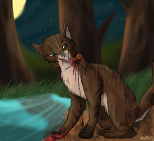 Hawkfrost's death by Nicki-the-bunneh