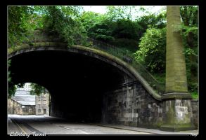 Edinburgh Tunnel by Toop