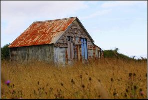 The old abandoned barn by thedigitalpagan