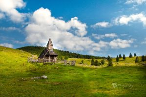 Alpine pasture_1 by XanaduPhotography
