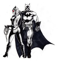 Batman et Catwoman by Mr-Lupin