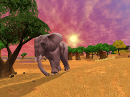 Zoo Tycoon 2: African Elephant (Female) by Chronicle-King