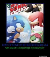 Best of Sonic the Hedgehog Rivals demotivational by lightyearpig