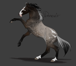Flash Auction - Denever by abosz007
