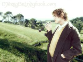 Merry Brandybuck in the Shire by Estella-Brandybuck
