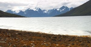 Red beach and moutains by My-dynig-soul