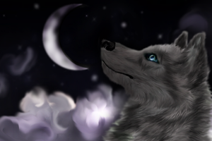 +.The POWER of dreams.+ by LoneWolfTori