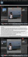 Lightroom2 SkinSoft + NR Tutor by mungkey