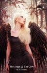 The Angel And The Crow by DigitalDreams-Art
