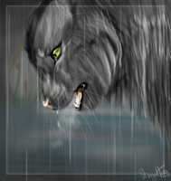 Graystripe tears by Hero-Wuff