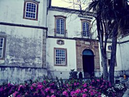 Colonial Architecture by BarbaraLambert