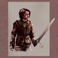 Arya of House Stark by Balkoth26