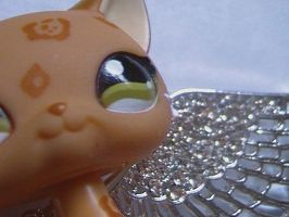 LPS Angel by WolfLoverMarine