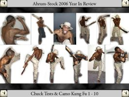 Camo Kung Fu 06 YIR 1 by Ahrum-Stock