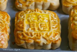 Home-made moon cake 3 by patchow