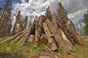 Woodpile by sequential