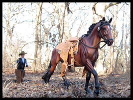 Breyer - Mishap On The Riding Trail by The-Toy-Chest