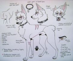 -Marcus feral ref.- by Huskypawz