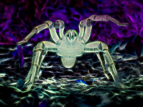 glow tarantula by Lord-Zeto
