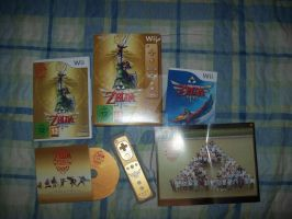 Zelda 25th aniversary Skyward sword pack by LadyNoriko666