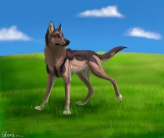 Shepherd by WolfHowl10