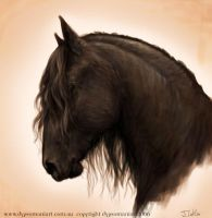 friesian by dypsomaniart