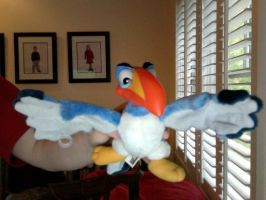 Zazu Plushie by FireNationPhoenix