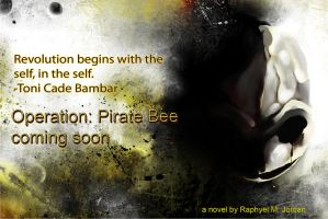 Operation Pirate Bee Ad 12 by rmj7