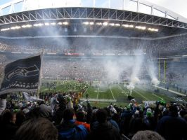 Seahawks Game by artin8