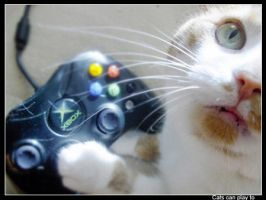 cats can play xbox by yoshiko-chan