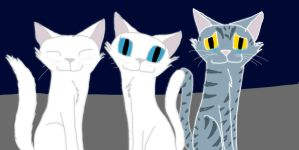 Whitestrom, Snowfur and Moonflower in Starclan by SilverOrcaaKitty17