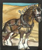 Work Horse ACEO series 8 by jupiterjenny