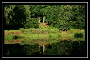 Natural Mirror by SpringlighT