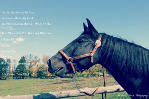 Just Picture Your Life For Me by 6horsecrazygurl9