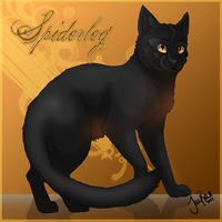 Spiderleg of ThunderClan by TheMoonfall