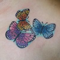 Butterflies by Tattooist-by-Nature